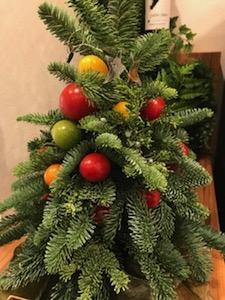 ワンダーファームの森のキッチンに飾ってあった「ミニトマトツリー」!可愛い♪
