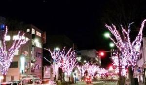 2014光のさくら祭り