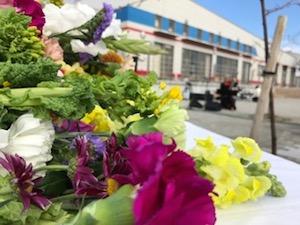 3月11日、献花された花。黙祷の時にはやっぱり涙が出てしまいました。