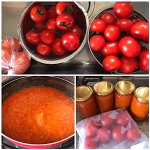 二人暮らしの我が家に、大漁のトマトの山が!当然食べきれないので、トマトソースにしたり冷凍にしたり・・・他にキュウリ、ナス、人参、ジャガイモも大量在庫。