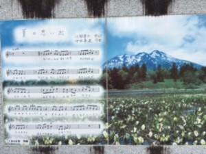ミニ尾瀬公園2