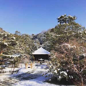 22日夜の雪はすごかったですね!翌23日は朝から青空で、雪化粧の阿弥陀堂も綺麗でした。