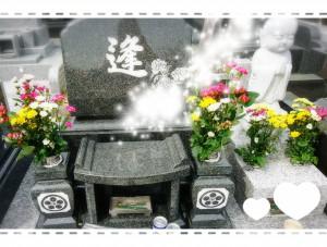 おまけ。春のお彼岸。お墓参り。春は色とりどりのお花があって、まわりのお墓も華やか🌸 お花が好きだったおばあちゃんもきっと喜んでくれたと思います(*^-^*) 家族として出逢えた事に感謝。またどこかでめぐり逢えますように。