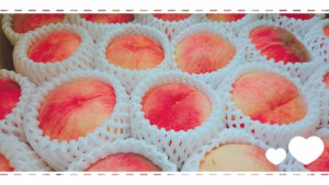 ♡おまけ♡ 頂き物の桃🍑 福島の名産🍑 あかつき🍑 夢の箱を開けた瞬間、ふわ~っと桃の良い香り。めっちゃくちゃ甘くて、幸せなひとときでした。 Tさん、ありがとうございました( *´꒳`* )