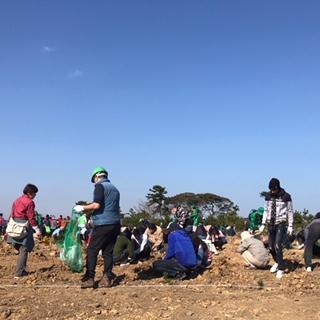 第1回ふくしま植樹祭。南相馬市の海岸に近い場所に、クロマツが植えられました。