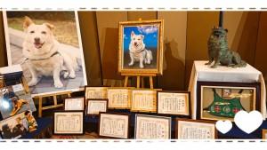 みなさん、名犬チロリをご存知ですか?捨て犬からセラピードッグとなり、たくさんの人を笑顔にしたワンちゃんです。 テレビ・映画でもたくさん取り上げられています。 アメリカではすでに動物介在療法として取り入れられていたこのセラピードッグを日本でも広めたいと活動されているのが大木トオルさんのもう一つのライフスタイルでもあります。 今は亡きチロリへ、ロビーにはたくさんの感謝状が✨