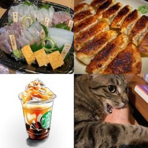ステイホームでの変化。テイクアウト、手間のかかる料理、愛猫と戯れる時間、そして新しい趣味?!