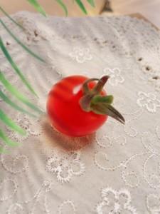初採れミニトマト