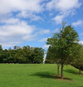 コロナ禍で密を避けようと公園をお散歩される方は増えていたようです。 日頃から市民の方に親しまれているいわきアリオス。 気持ちいいっ!