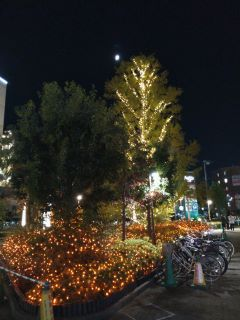 201025 kameari-04