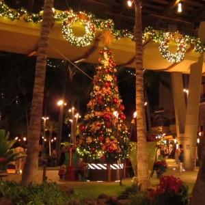 南国ムードのクリスマスツリー。日本と違って飾り付けもとっても自由!