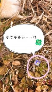 春よ来い来い早く来い🌸
