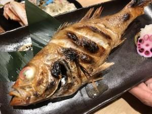これはご馳走になったノドグロ!あの錦織圭選手も好きだと言った魚です。高級魚〜♪でも青魚じゃないの〜(汗)