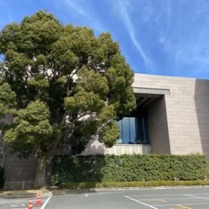 ちょっと珍しい?南側から見た美術館。私このアングルがとても好きなんです!頑張れいわき市立美術館!