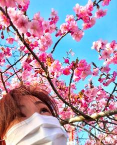 2021.河津桜