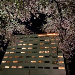 4月2日(金)の夜はハワイアンズへ!お風呂にお蕎麦にグランドポリネシアンショー。