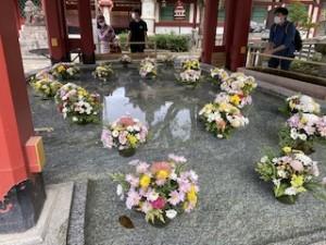 最近こうした手水舎にお花を飾るところ、増えましたね♪これは秋の花ですね。