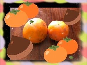 庭先に、柿が3つ置いてありました。 近所のおばあちゃんが置いていってくれたものです。 祖父が席を外して居たときに持ってきてくれたんでしょう。 私が帰って来ると、誰もいない居間でもしゃもしゃ柿を食べている犬がいました・・・! 「コラーっ!!!!!(`Д´)」